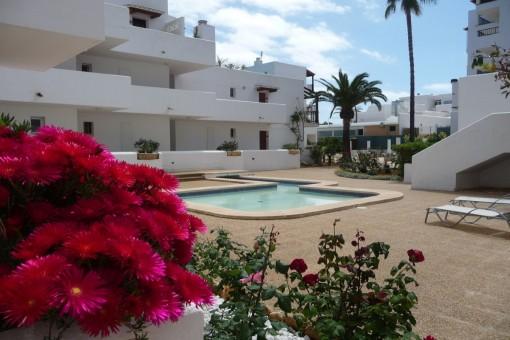 Eigenes Zuhause auf Mallorca - Studio in Cala D'or beim Strand von Cala Esmeralda