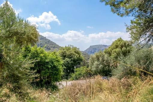 Grundstück mit unverbaubarer Aussicht, nur 5 Gehminuten von Valldemossa entfernt