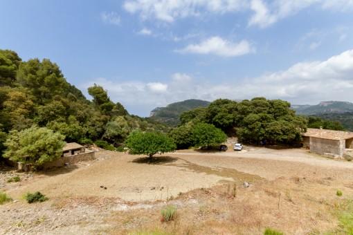 Ansicht des großen Grundstückes