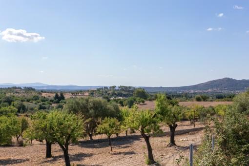 Grundstück mit Basisprojekt für Haus und Pool in Moscarí/Selva