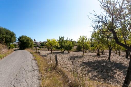 Blick zum Dorf Moscari