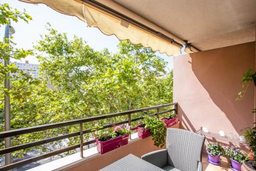 Top modernisierte Wohnung im Herzen von Palma