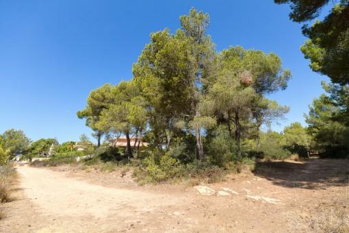 Schönes Grundstück in luxuriöser Villengegend in Maioris Décima