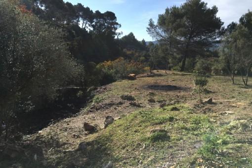 Ansicht des Grundstückes nach Südwesten