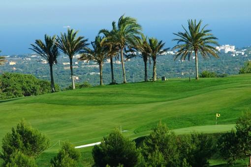 Golfplatz in der Nähe 1