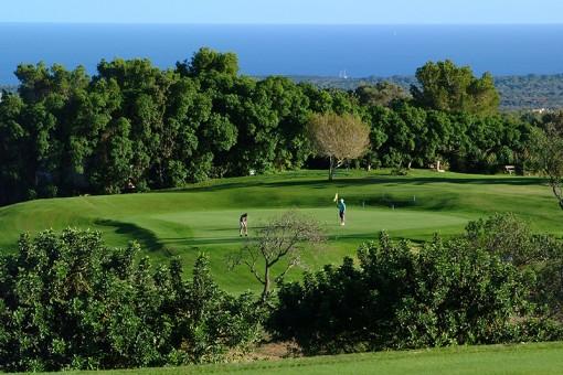 Golfplatz in der Nähe 2