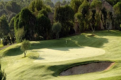 Golfplatz in der Nähe 3