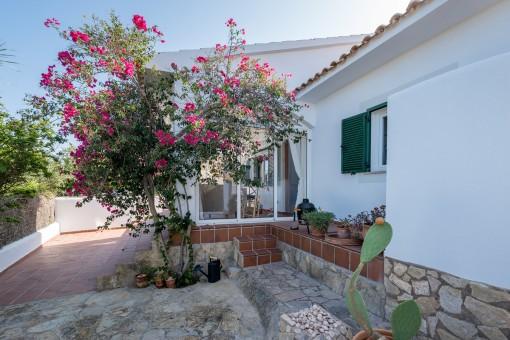 Herrliche Terrasse und Zugang zum Haus