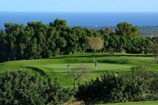 Golfplpatz in der Nähe