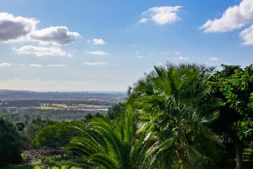 Weitblick über die Bucht von Palma