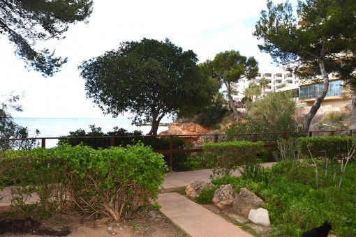 Wunderschöne Wohnung mit Meerblick in optimaler Lage in Santa Ponsa