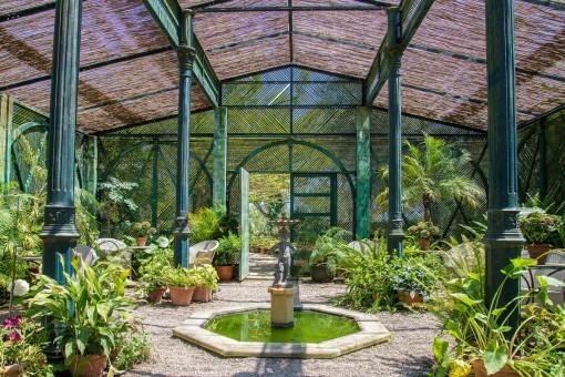 Palmenhaus im Garten