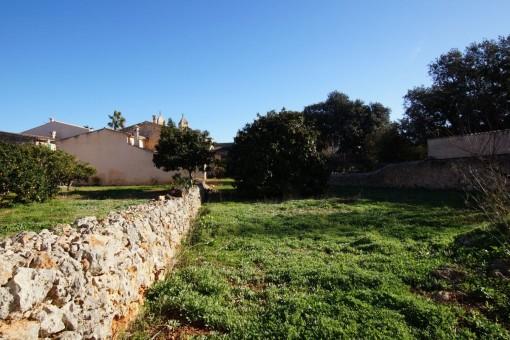 Sonniges Baugrundstück in zentraler Lage in Pina