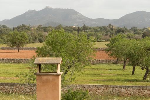 Blick zum Puig de Sant Salvador