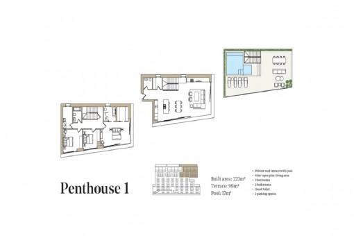 Penthouse 1