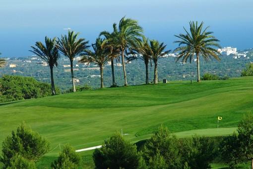 Fantastischer Golfplatz in der Nähe