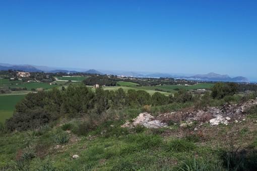Fincagrundstück in exponierter Lage mit weitläufigen Panoramablick auf das Umland von Santa Margalida