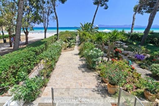 Duplex-Wohnung in erster Meereslinie, direkt am Strand von Alcudia - kaufen