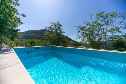 Pool für heiße Sommertage
