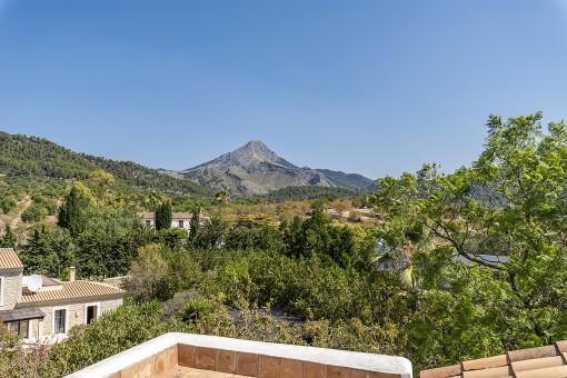 Toller Blick zum Puig de Galatzó