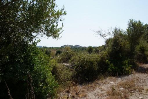 Wunderschönes, ruhiges Finca-Grundstück mit Rohbau bei Artà