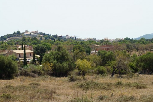 Herrliches Finca-Baugrundstück, ruhig gelgen bei Artà
