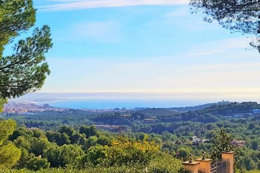 Eines der letzten Meerblick-Grundstücke in Alt-Son Vida mit einzigartigen Rundumblick über die Bucht von Palma