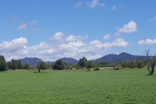 Wunderschönes Grundstück mit bezauberndem Panoramablick bei Cas Concos