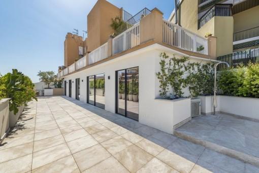 Lichtdurchflutetes Penthouse mit wunderschöner großer Terrasse im Zentrum von Palma