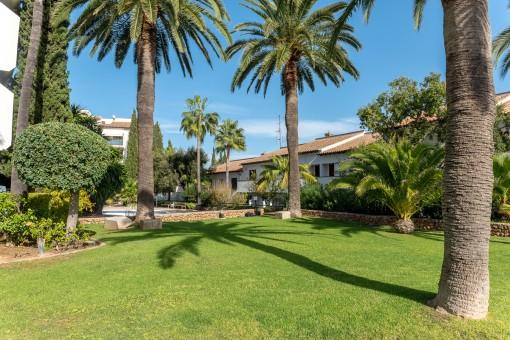 Gemeinschaftsgarten mit Palmen