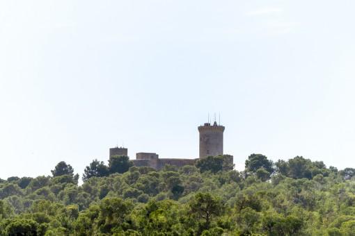 Blick zum Castell Bellver