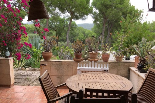 Idyllisches Erdgeschoss Apartment mit Gartenterrasse nahe Club de Vela in Port Andratx