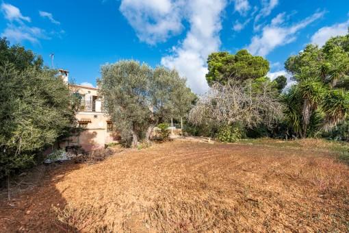 Mallorca-haus-renovieren-kaufen-vallgonera16