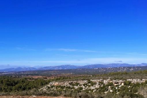 Baugrundstück mit Panoramablick in Son Gual
