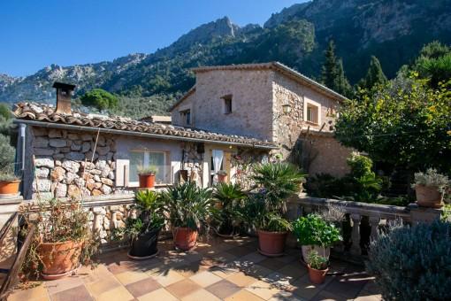 Finca mit Meerblick und zwischen Olivenbäumen in Fornalutx