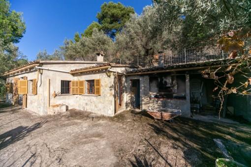 Olivenhain mit kleinem Haus ein paar Meter vom Dorf entfernt in Fornalutx