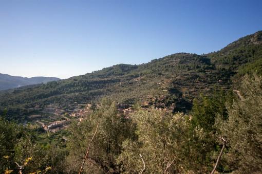 Blick vom Grundstück aus