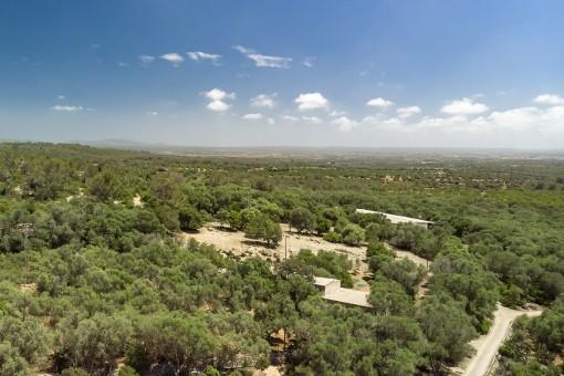 Ansicht des Grundstücks