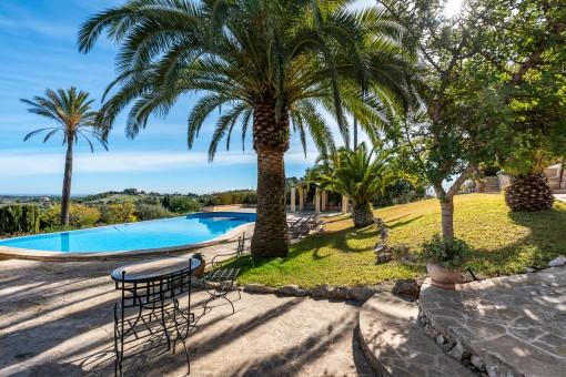 Poolbereich mit Terrasse und Palmen