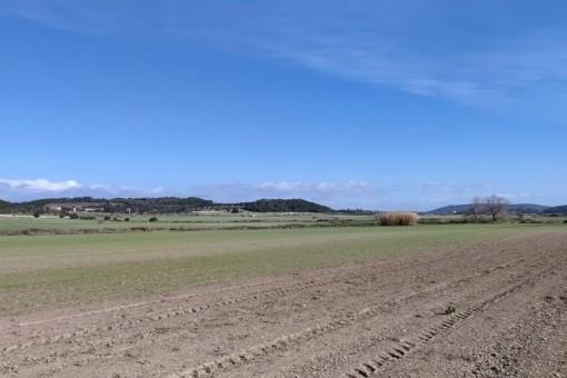 Ruhig gelegenes Finca-Baugrundstück bei Montuïri