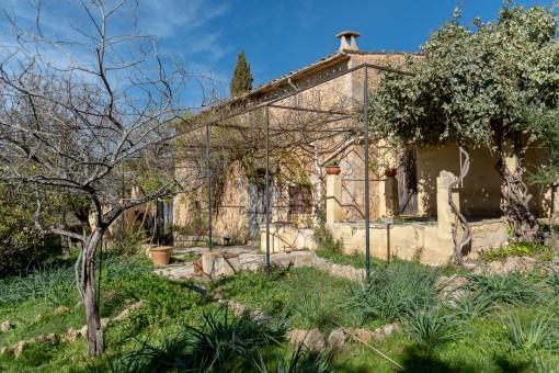 Terrasse und Garten umgeben das Haus