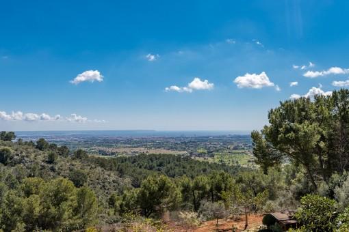 Beeindruckender Panoramablick über die Bucht von Palma