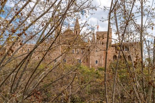 Blick zur Kathedrale
