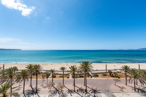 Apartment in erster Meereslinie an der Playa de Palma