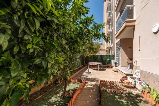 Schöne Erdgeschosswohnung mit Garten in unmittelbarer Meeresnähe in Can Pastilla