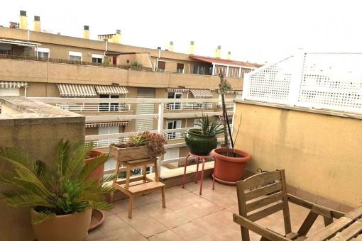 Wohnung in idealer Lage mit Dachterrasse in Ciudad Jardín, Palma