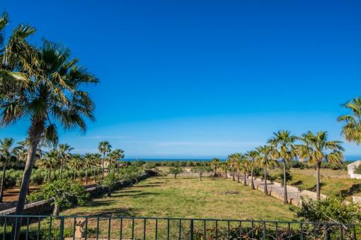 Toller Blick über den Garten bis zum Meer