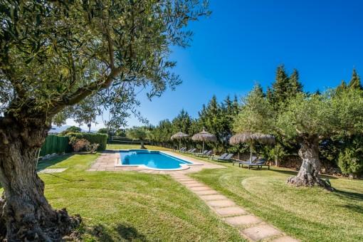 Pool umgeben von Garten und Olivenbäumen