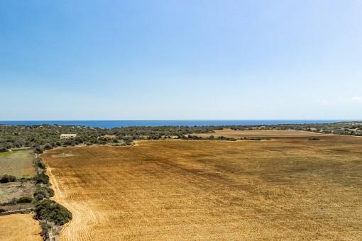 Traumhaftes Grundstück mit Meerblick und Basisprojekt für eine einzigartige Finca in s'Almunia