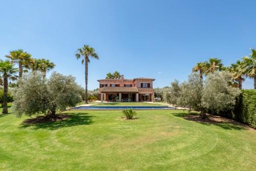 Garten mit Olivenbäumen
